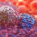 Sconfiggere il tumore con anticorpi bispecifici