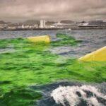 Fukushima: rilascio in acqua delle scorie radioattive