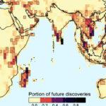 Specie animali da scoprire nel mondo: in lavorazione la mappa