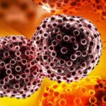 Scoperto meccanismo che fa crescere i tumori