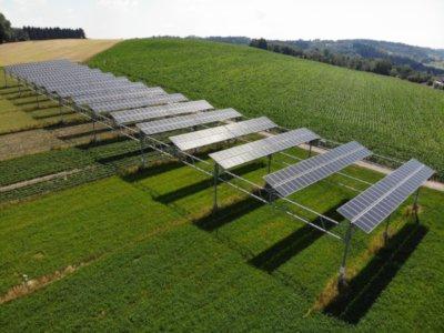 Il fotovoltaico in agricoltura: tutti i vantaggi