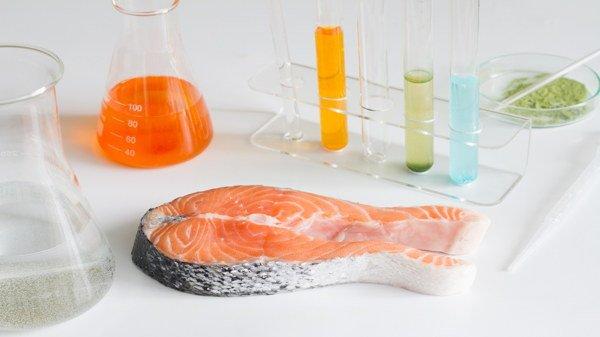 Pesce con mercurio: i più inquinati verdesca e pesce spada