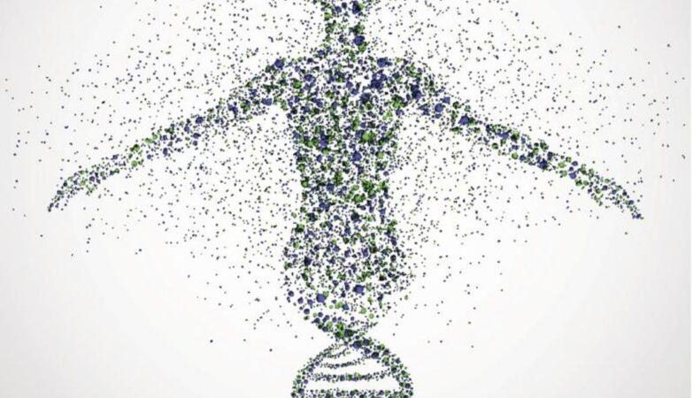 Mappa DNA umano completata