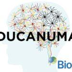 Aducanumab farmaco contro l'Alzheimer approvato negli USA