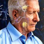 Perchè si perde la memoria con l'Alzheimer?