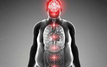 Obesità scoperte nuove cause orologio biologico