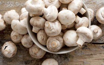 Funghi fanno bene alla salute
